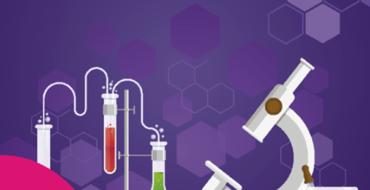 Projeto Interdisciplinar de Iniciação Científica Cientista do Futuro